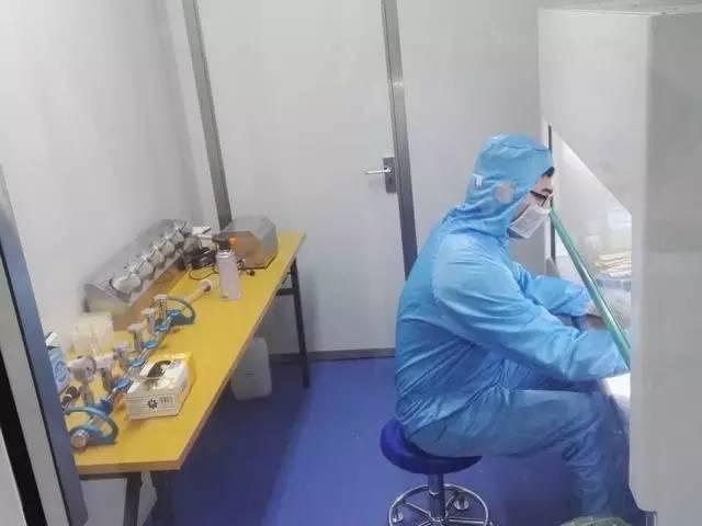 金箔包装微生物实验室进入正常运转